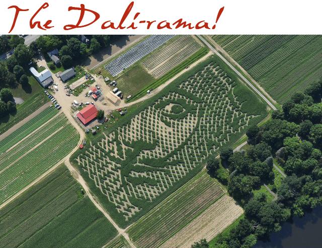 warner farm corn maze